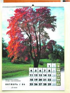 Календарь настенный 12 листов